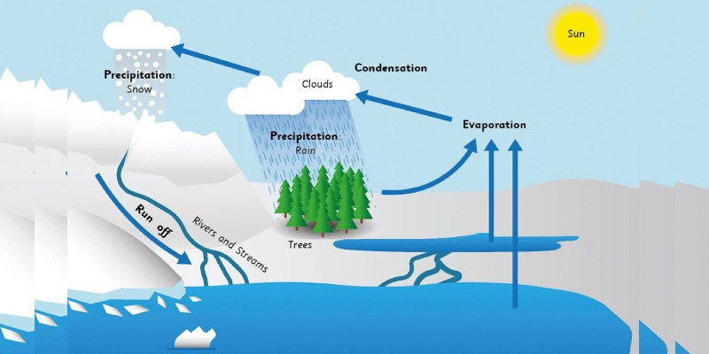 Quiz: How Much You Know About Water Cycle?