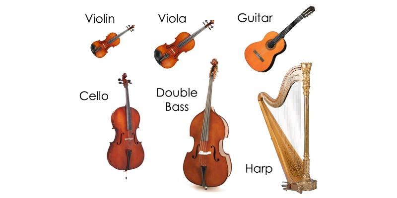 Which String instrument You Like Most Quiz