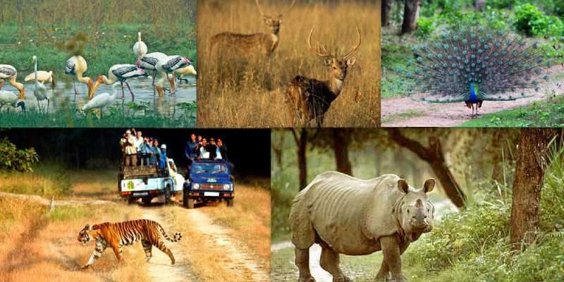 National Parks and Sanctuaries of India Trivia Quiz