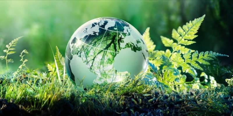 Environmental Awareness Quiz For Kids