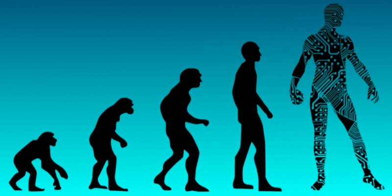 Quiz: How Much You Know About Human Evolution?