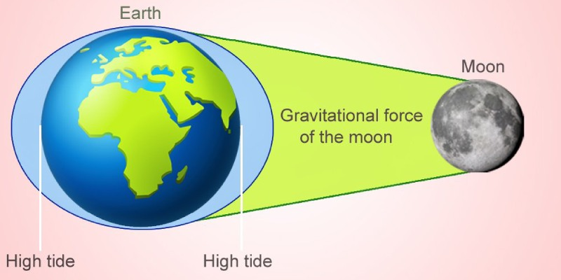 Gravitational Force Multiple Choice Question Trivia Quiz! Take This Gravity or Gravitation Test Quiz