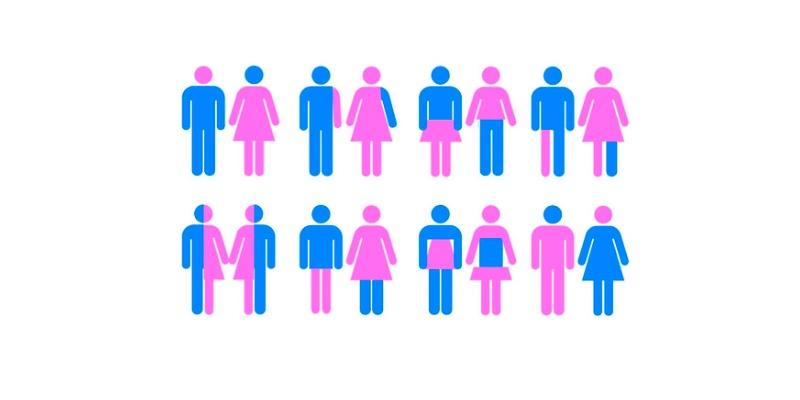Quiz: What Is My True Gender?