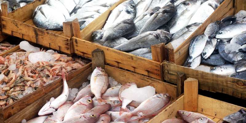 Test Your Knowledge About Fish Industry in India Quiz! Can You Pass This Fish Industry in India Trivia Quiz