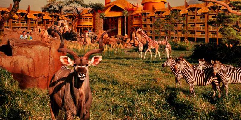 Trivia Quiz About Animal Kingdom Basis of Classification