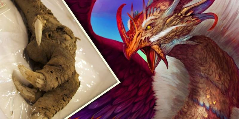 Quiz: Which Mythical Creature Is Your Guardian?