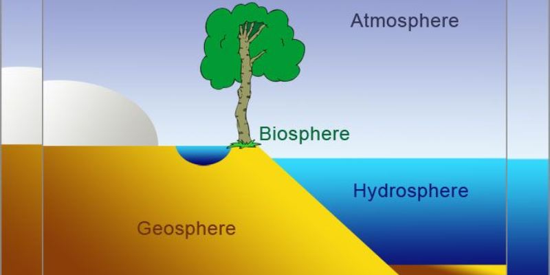 Quiz: How Well Do You Know About Biosphere?