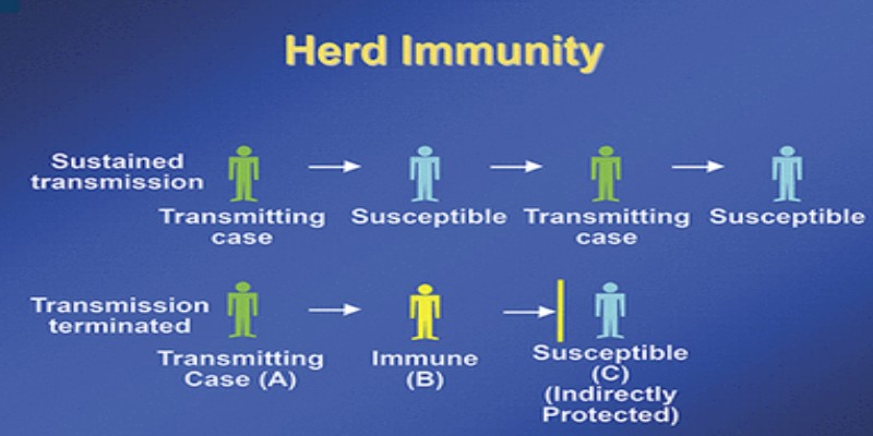 Do You Know About Herd Immunity Theory Against COVID 19 Quiz