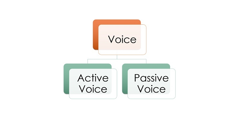 Quiz: Test Your Knowledge About Active and Passive Voice