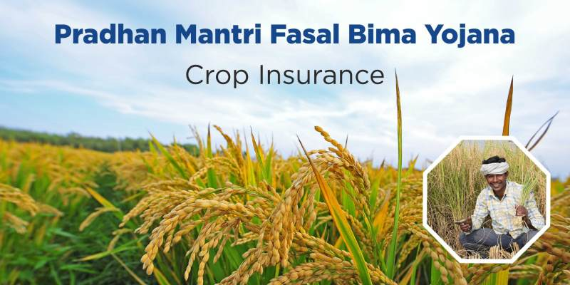 Test Your Knowledge About Pradhan Mantri Fasal Bima Yojana-PMFBY Trivia Quiz