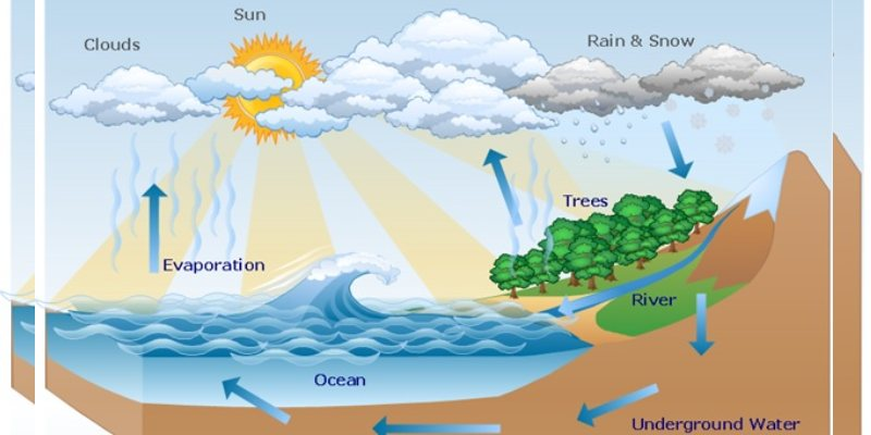 Quiz: Can You Pass The Test About Hydrosphere?