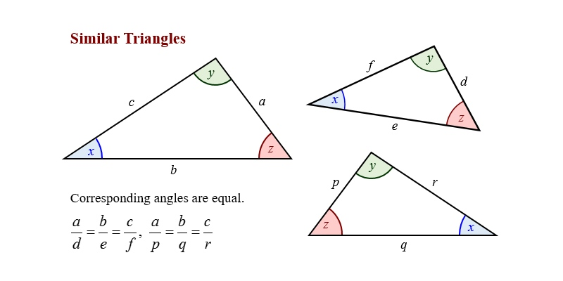 Similarity Of Triangle Trivia Quiz