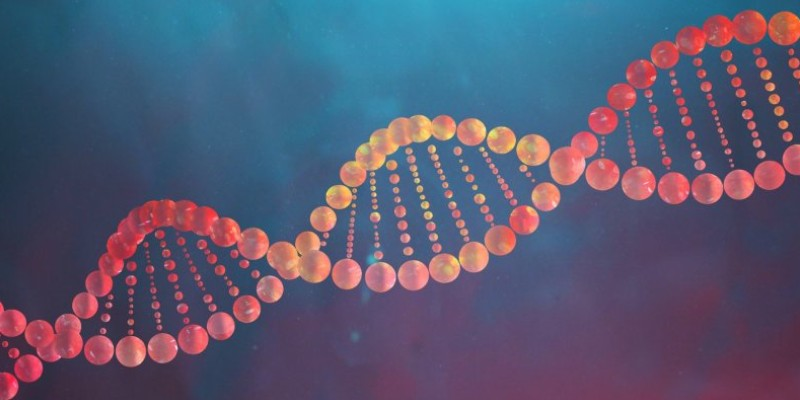 Quiz: How Much You Know About DNA and Its Structure?