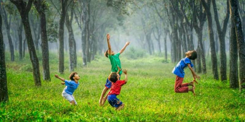 Making Peace with Nature Report Quiz
