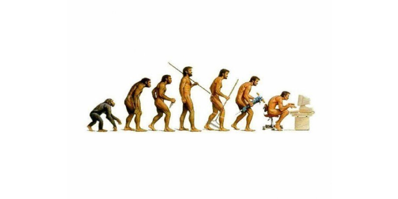 Quiz: How Much You Know About Principles And Theories Of Evolution?