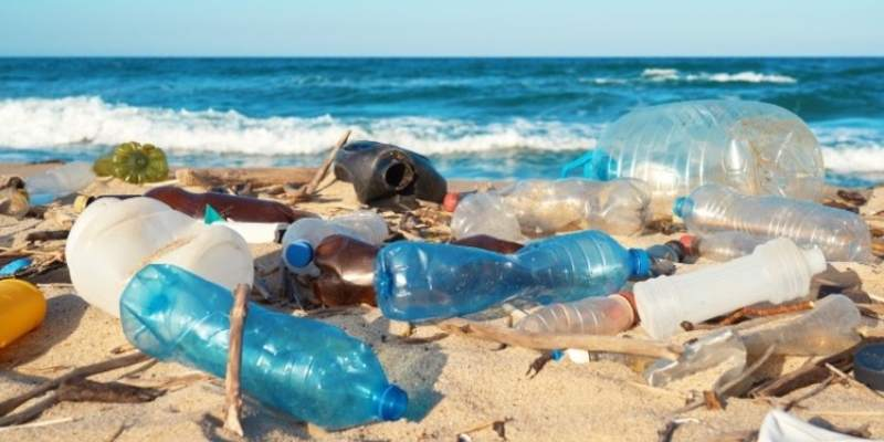 Quiz: The Trivia Facts About Plastic Pollution