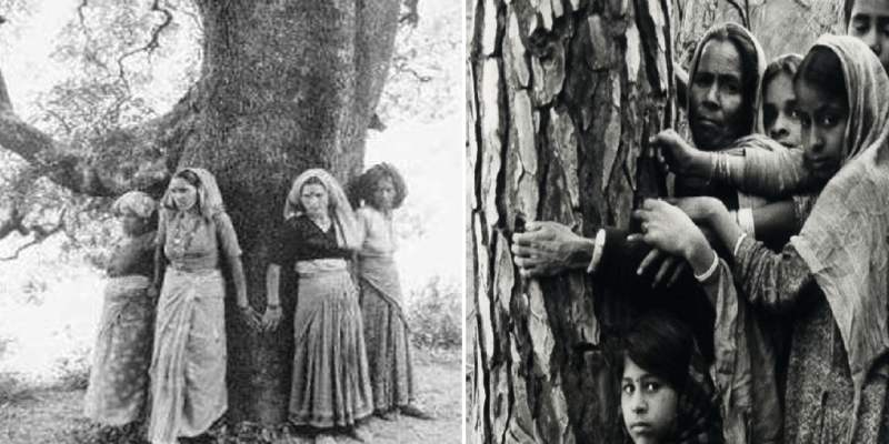 How Much You Know About Chipko Movement Quiz