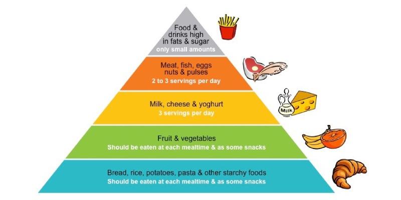 Food Pyramids Trivia Quiz! Let