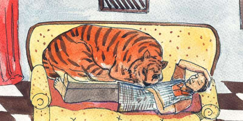 A Tiger In The House Chapter Quiz For 7th Grade Student