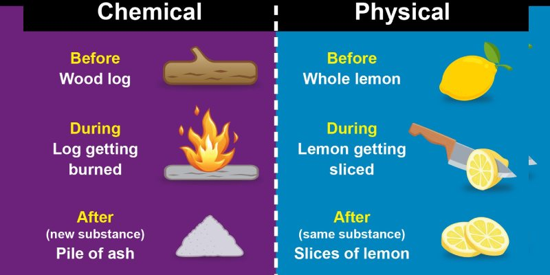 Physical And Chemical Change Trivia Quiz For 7th Grade Students