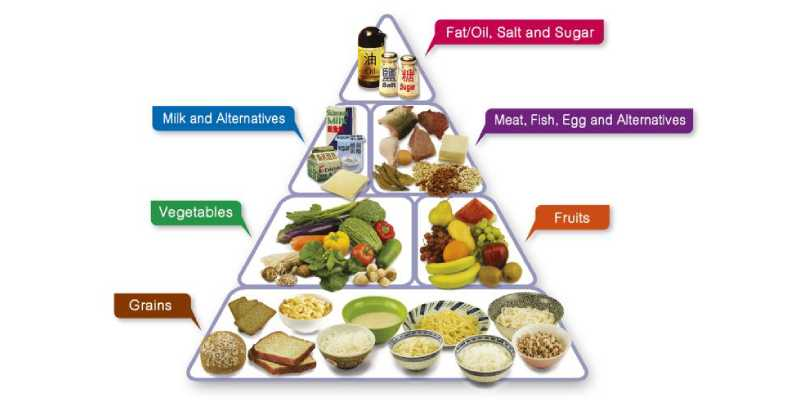 Quiz for 6th Grade Student: How Much You Know About Components Of Food?