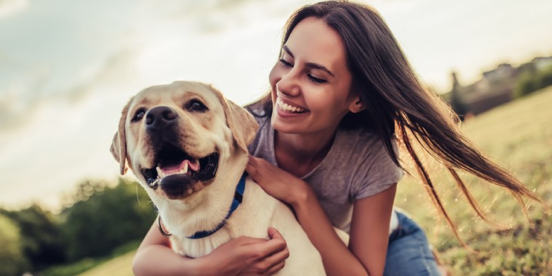When To Put Your Dog Down Quiz