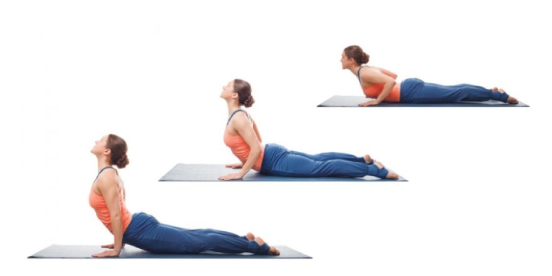 How Much You Know About Bhujangasana or Cobra Pose Yoga? Ultimate Trivia Quiz About Bhujangasana or Cobra Pose Yoga