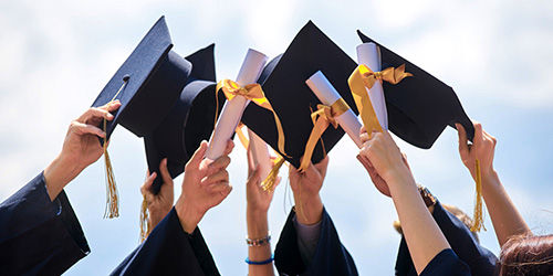 Quiz: What Degree Should You Pursue In College?
