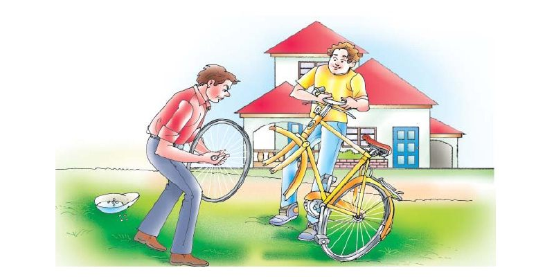 A Bicycle In A Good Repair Chapter Quiz For 7th Grade Student