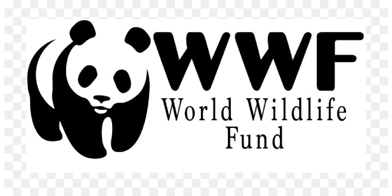 Quiz: How Much You Know About World Wide Fund for Nature?